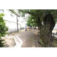 周辺環境:児童遊園