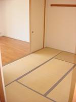 和室:最近では珍しい和室